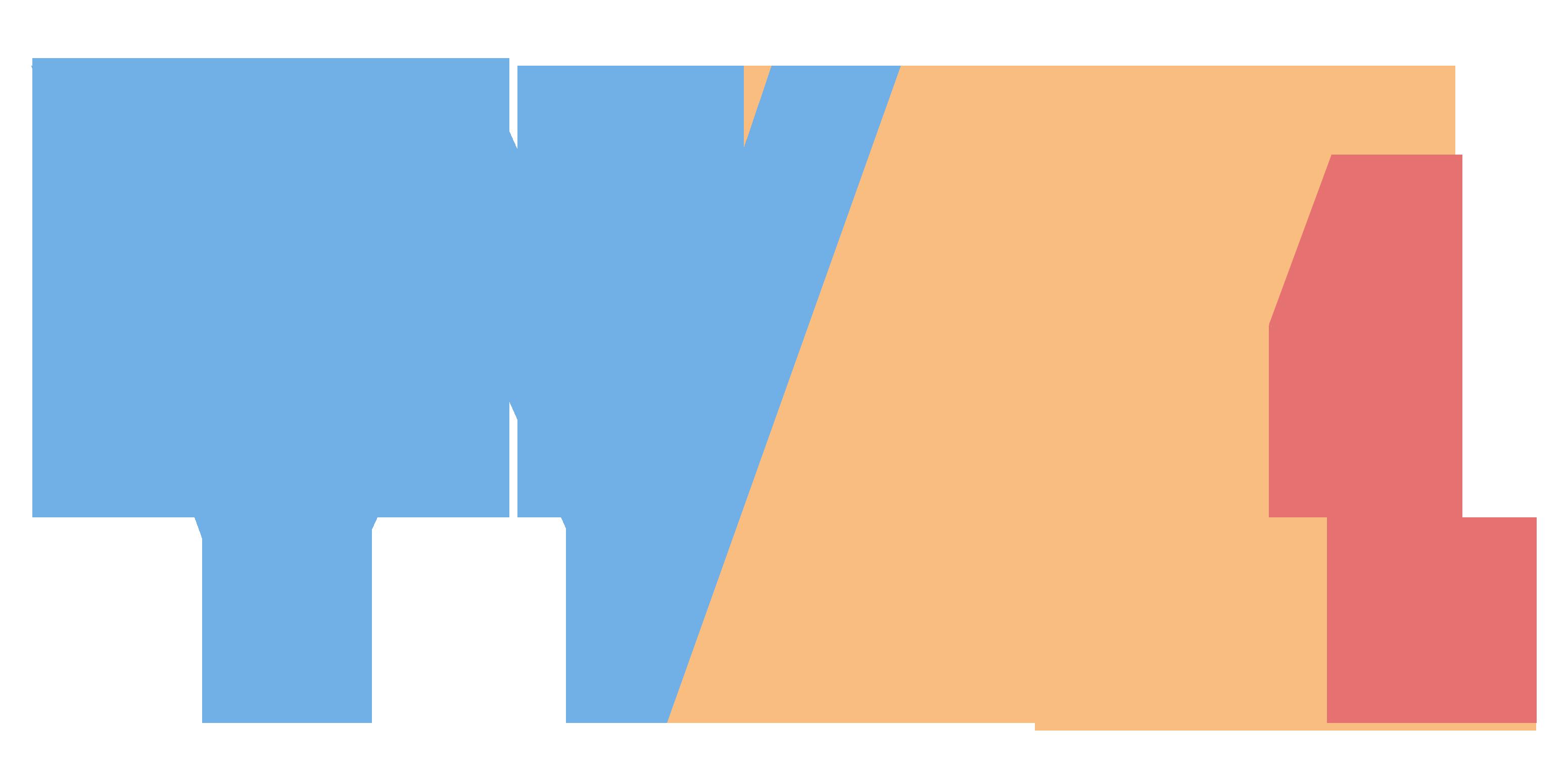 Watt Next Management